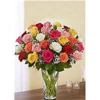 36_multi_colored_roses